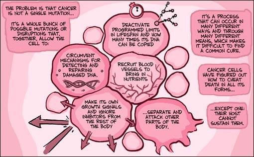 cancer-process.jpg