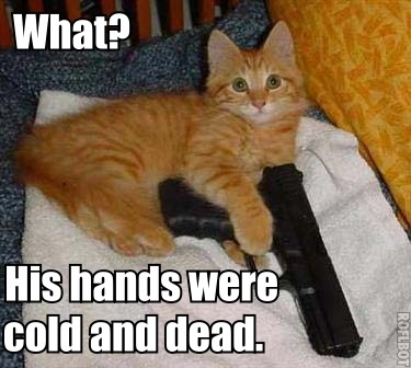 Kitty pries gun from Charlton Heston's cold dead hands