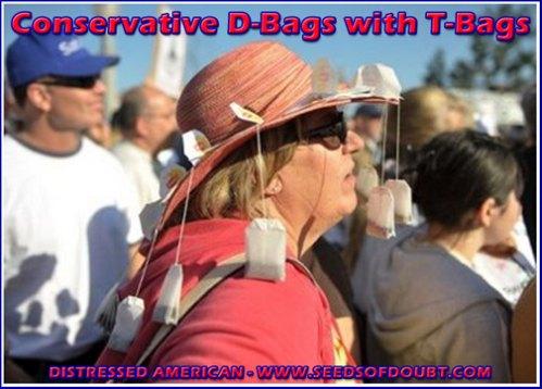 d-bags-t-bags.jpg