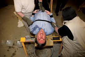 hitchens-waterboarded.jpg
