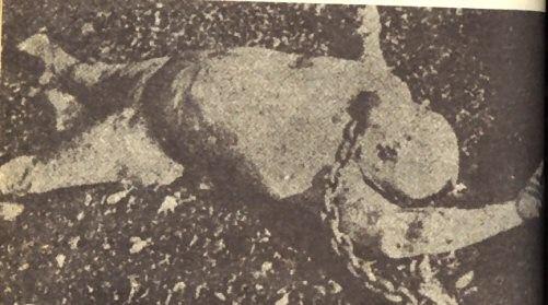 alberto-lovera-dead