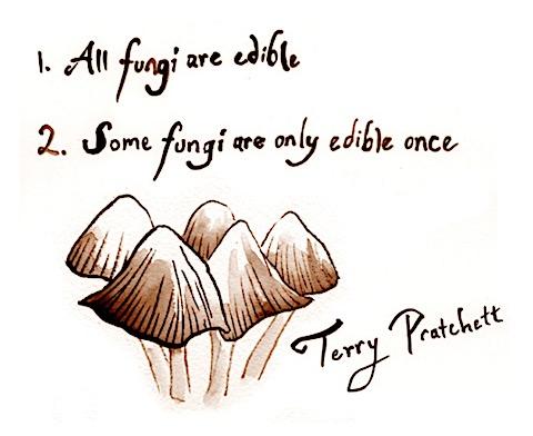 all-fungi-edible.jpg