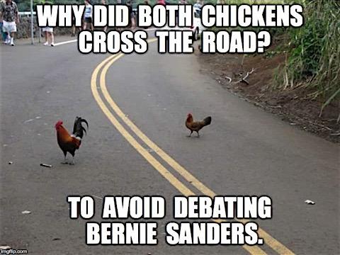 chicken-debate.jpg