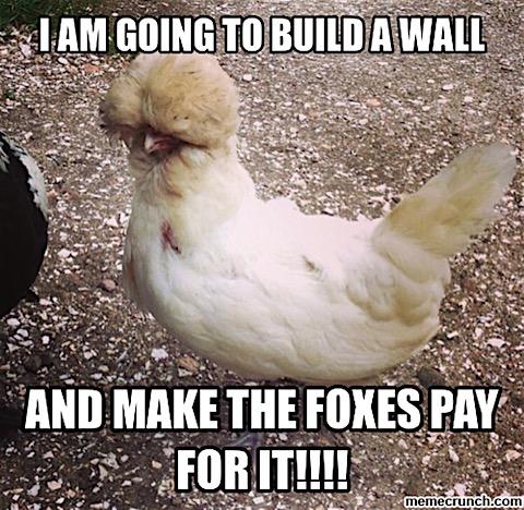 chicken-wall.jpg