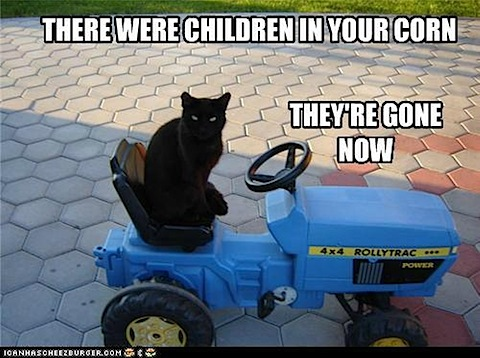 children-in-corn-gone-now.jpg