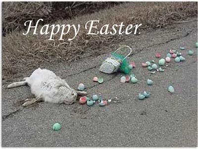 easter-bunny-dead.jpg