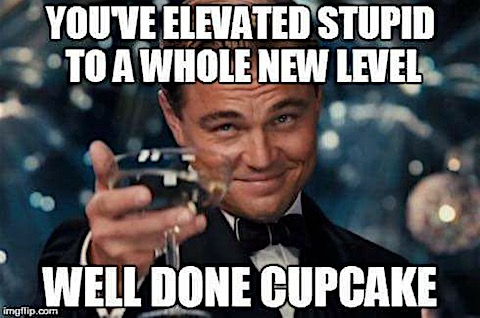 elevated-stupid.jpg