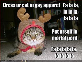 gay-apparel-cat.jpg
