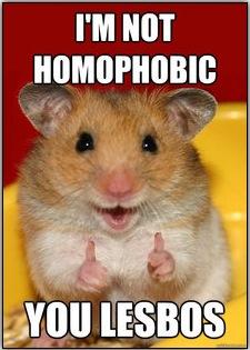 homophobic-hamster.jpg