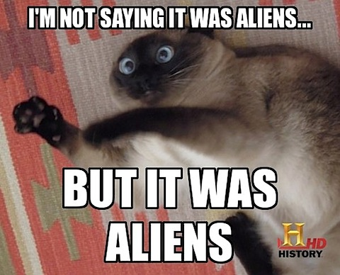 im-not-saying-it-was-aliens-but-it-was-aliens-funny-cat.jpg