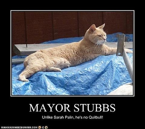 mayor-stubbs.jpg