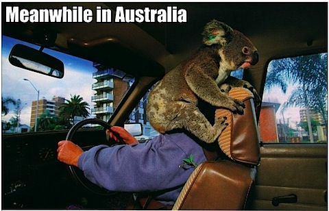 meanwhile-in-australia.jpg