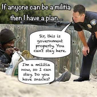militia-plan.jpg