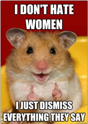 misogyny-hamster.jpg