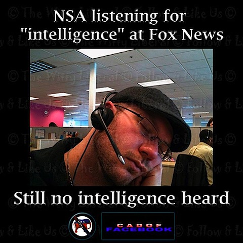 no-intelligence.jpg