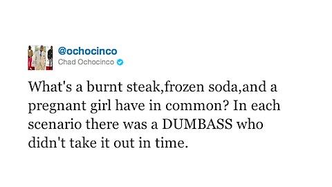 ochocinco-stupid-tweet.jpg