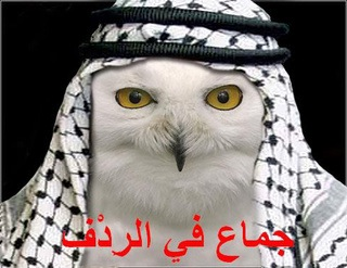 orly-owl-arab.jpg