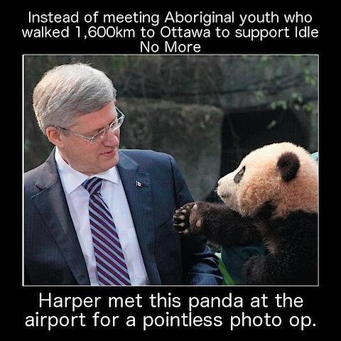 panda-photo-op.jpg