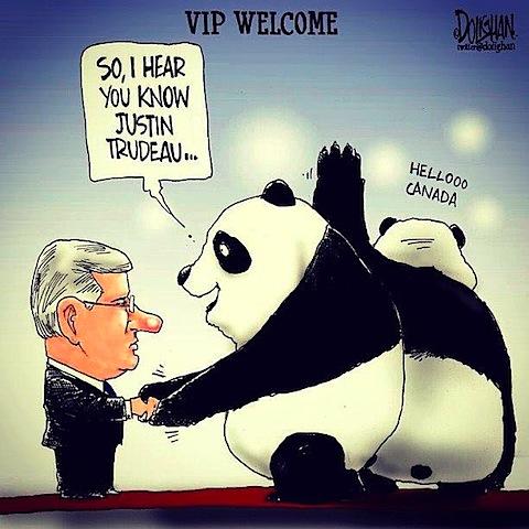 panda-vips.jpg