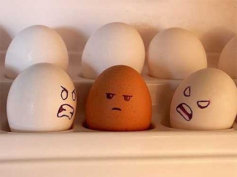 racist-eggs.jpg