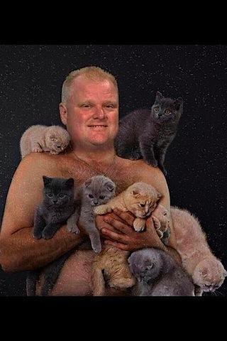 robbo-kittens.jpg