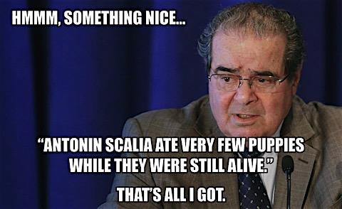 scalia-ate-few-puppies.jpg