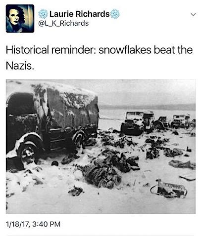 snowflakes-beat-nazis.jpg