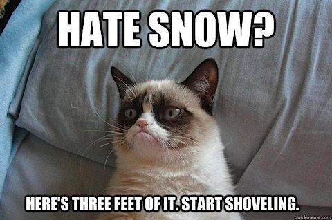 tardar-snow.jpg