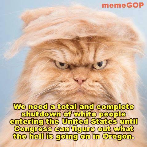 trumpy-cat.jpg