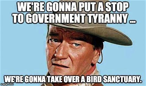 tyranny-of-bird-sanctuaries.jpg