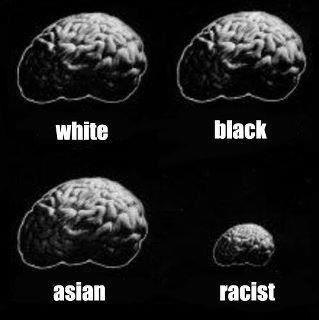 white-black-asian-racist-brains.jpg